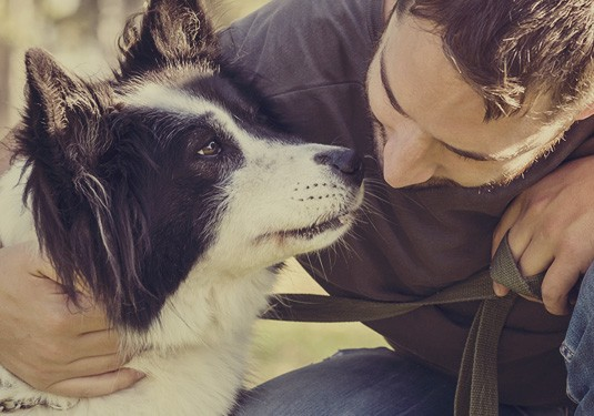 Pet Loss Center Owner Gains Valuable Time, Reduces Financial Stress Through Accounting Partnership with Foster Results